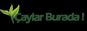 Caylar-burada-logo